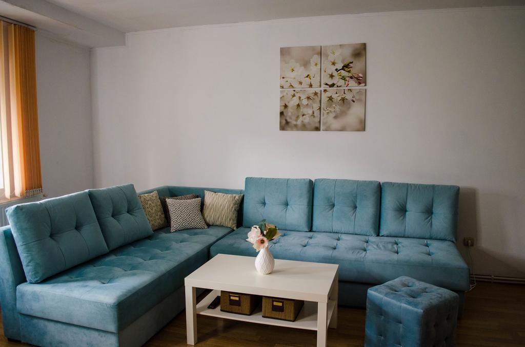 Collosal Apartment with Garden București